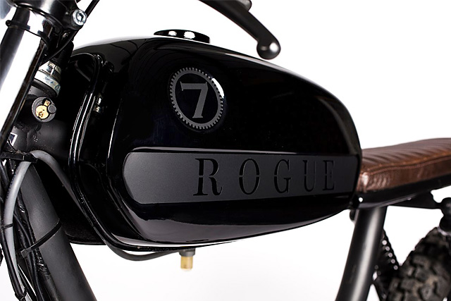 23_03_2015_rogue_puch_03